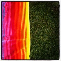 pic_grass