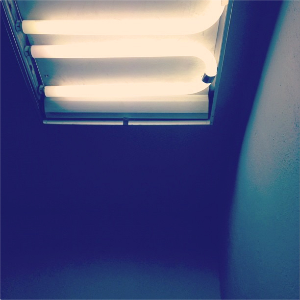pic_light_study