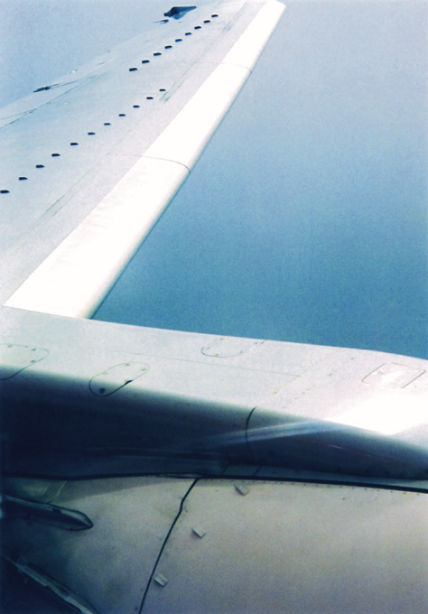 pic_wing