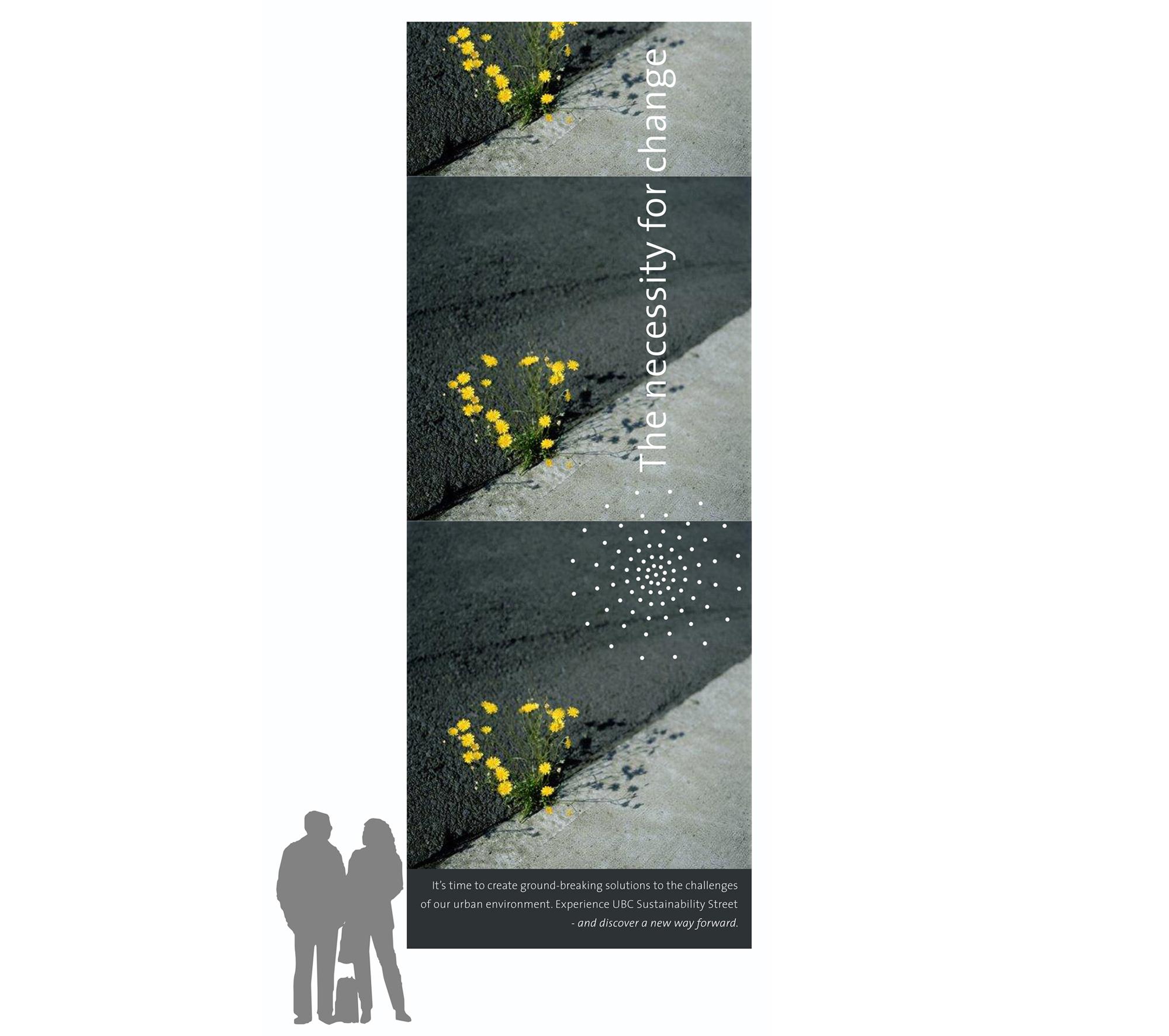 street_large_banner